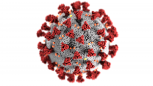 Coronavirus in the crosshairs, Part 1